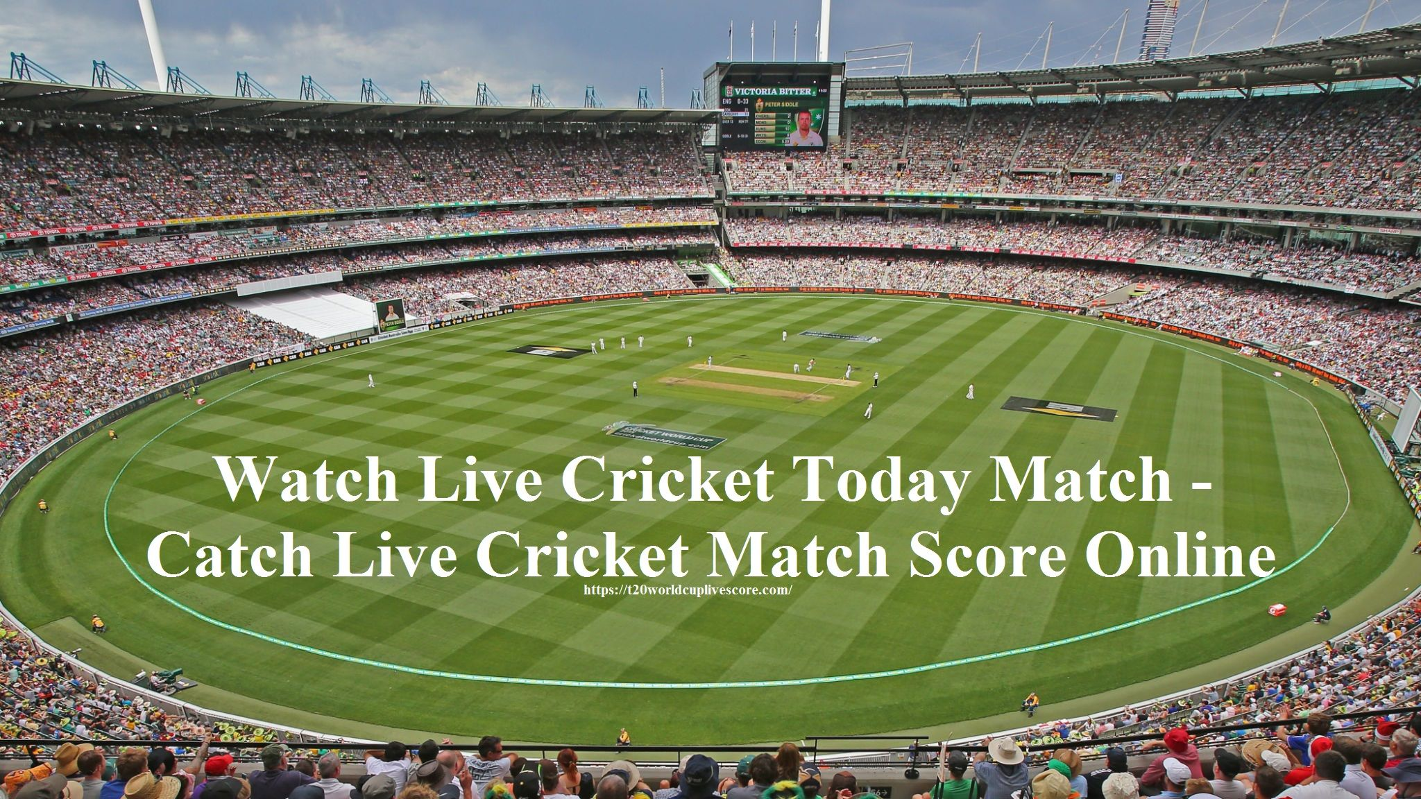 Watch Live Cricket Today Match - Catch Live Cricket Match Score Online
